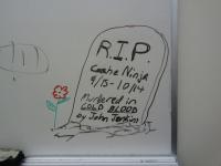 The Cache Ninja is dead!